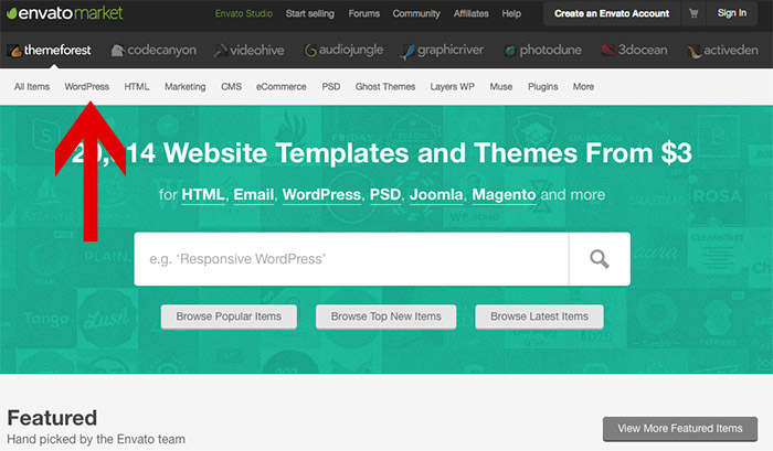 Find a wordpress theme on theme forest