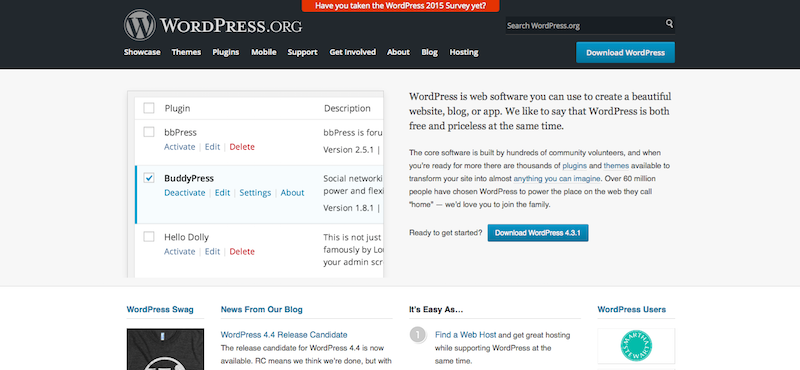 you can use WordPress to build your own private practice website