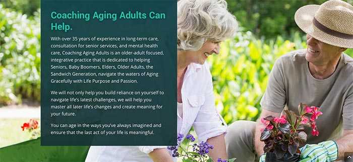 high contrast website design older adults optimized